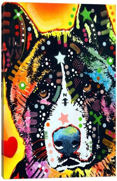 Akita Canvas Print #4233
