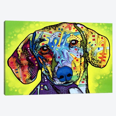 Dachshund Canvas Print #4244} by Dean Russo Art Print