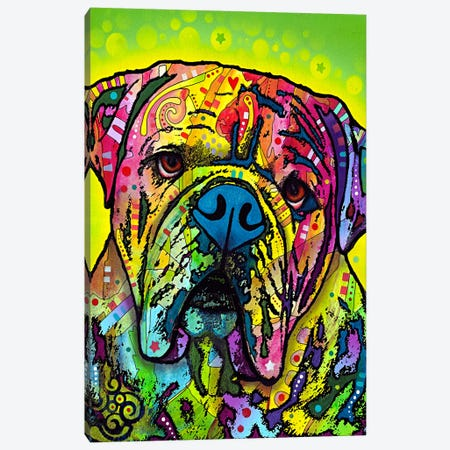 Hey Bulldog Canvas Print #4252} by Dean Russo Canvas Print