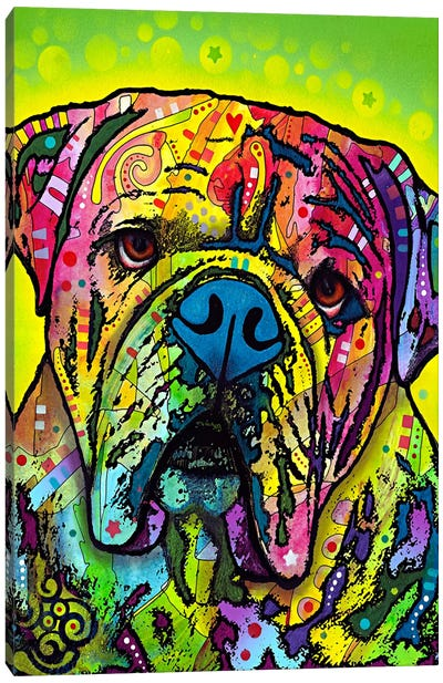 Hey Bulldog Canvas Art Print