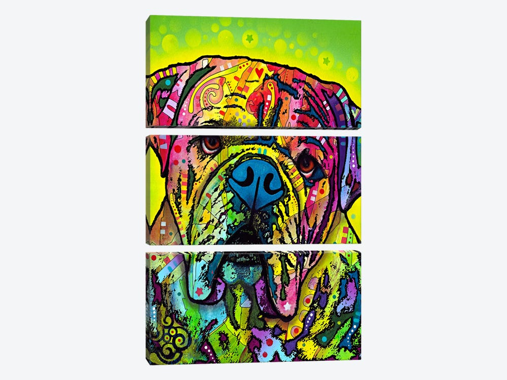 Hey Bulldog by Dean Russo 3-piece Canvas Wall Art