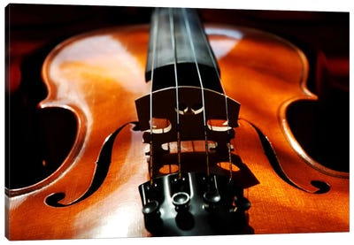 Violin Canvas Art