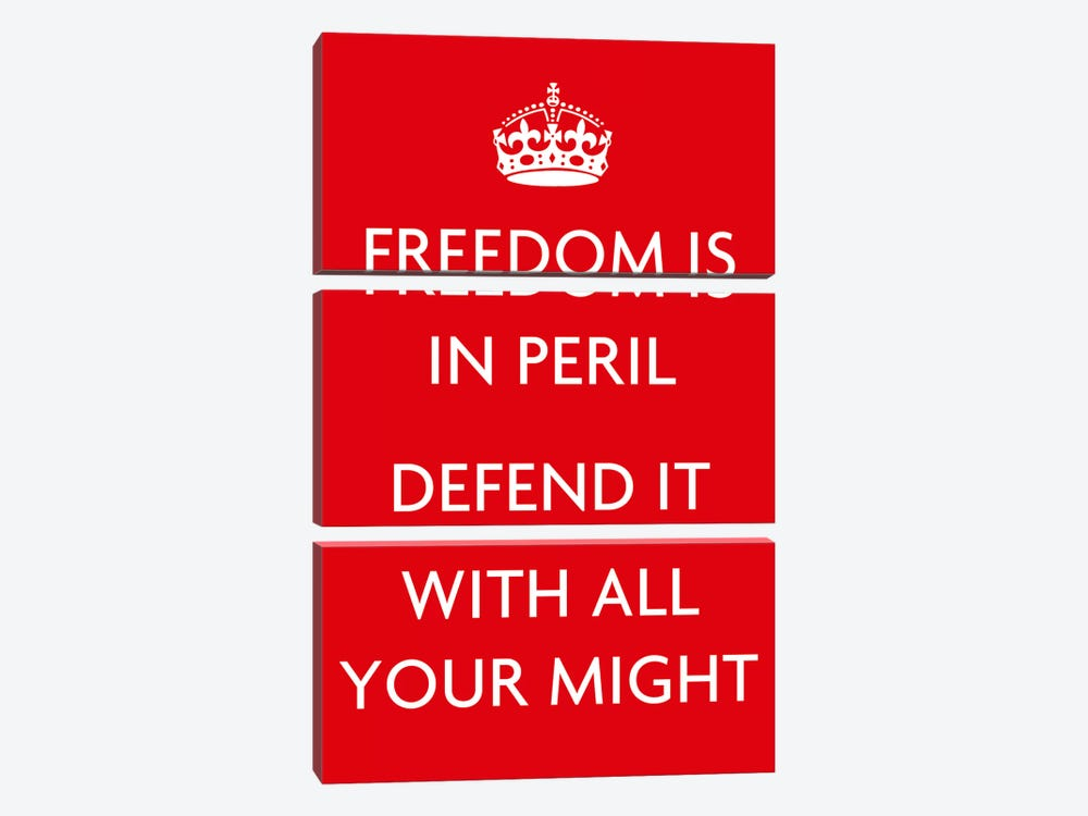 Freedom Is In Peril by Unknown Artist 3-piece Canvas Artwork