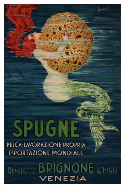 Venezia iCanvas Spugne Benedetto Brignone /& Figli Small