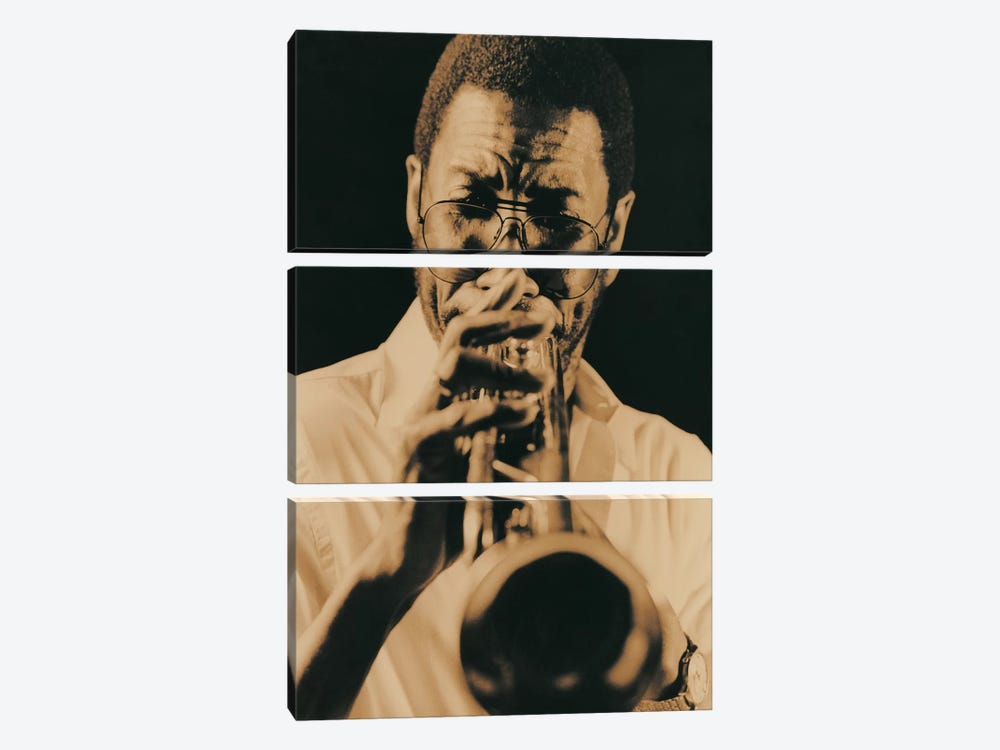 Jazz Trumpet Player Vintage 3-piece Canvas Artwork