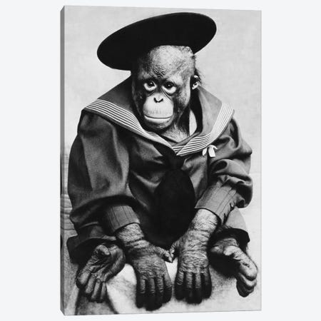 Monkey In Graduation Outfit Vintage Photopgraph Canvas Print #7027} by Unknown Artist Canvas Print