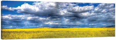 Yellow & Blue Canvas Art Print