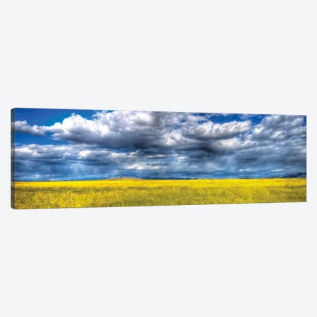 Yellow & Blue Canvas Print #7048} by Bob Larson Canvas Art