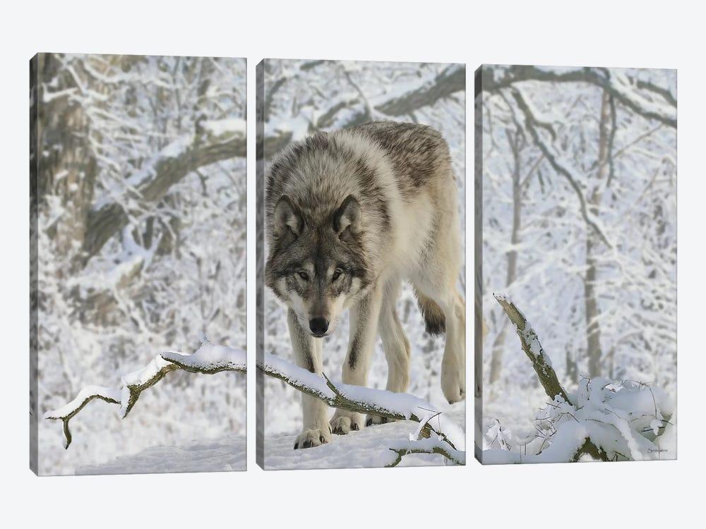 Zoo Wolf 03 by Gordon Semmens 3-piece Canvas Wall Art