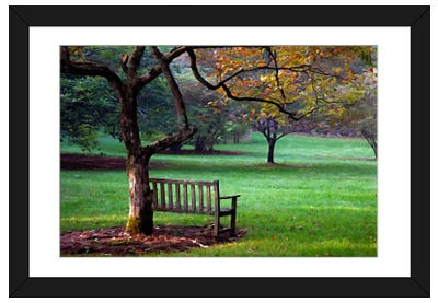 Place to Sit Framed Art Print