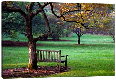 Place to Sit Canvas Art Print