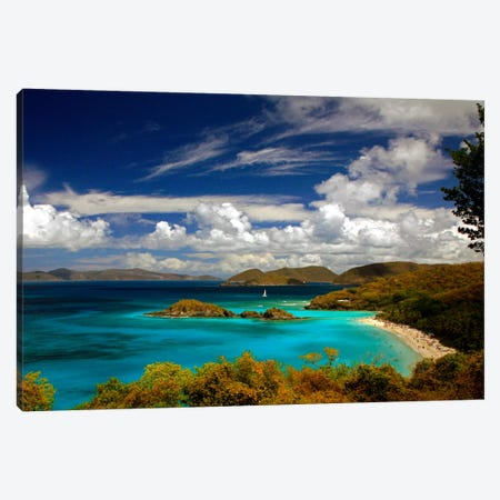 Trunk Bay Canvas Print #7083} by J.D. McFarlan Canvas Artwork
