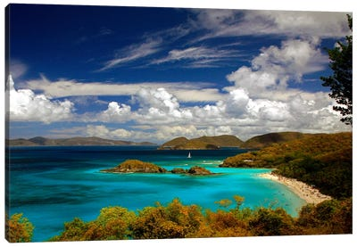 Trunk Bay by J.D. McFarlan Canvas Artwork