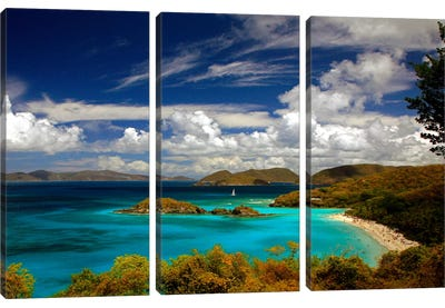 Trunk Bay Canvas Art Print
