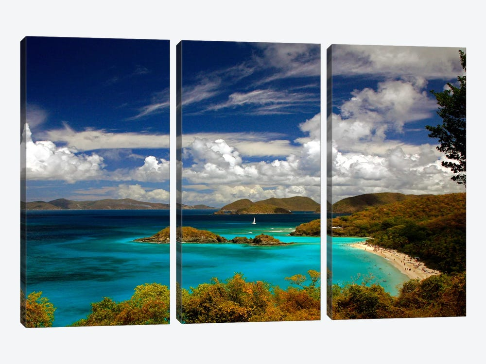 Trunk Bay by J.D. McFarlan 3-piece Art Print