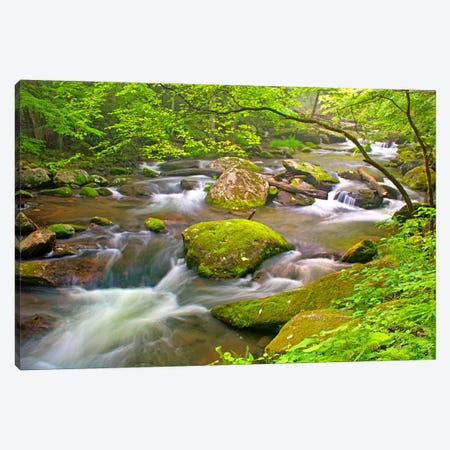 Little River Rapids Canvas Print #7094} by Bob Rouse Canvas Art