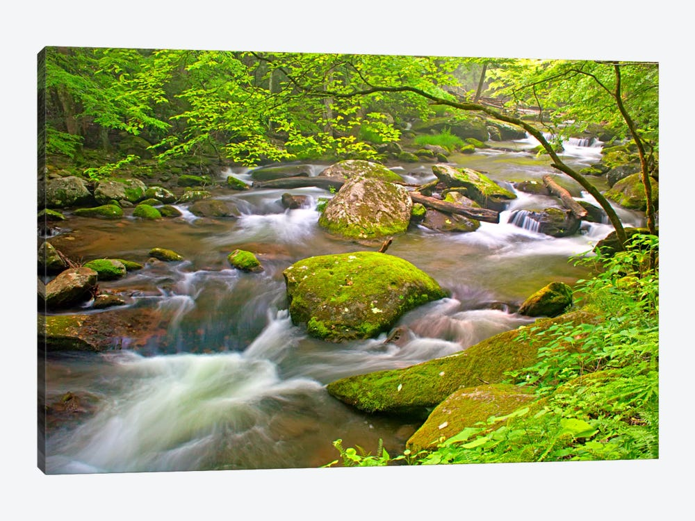Little River Rapids by Bob Rouse 1-piece Art Print