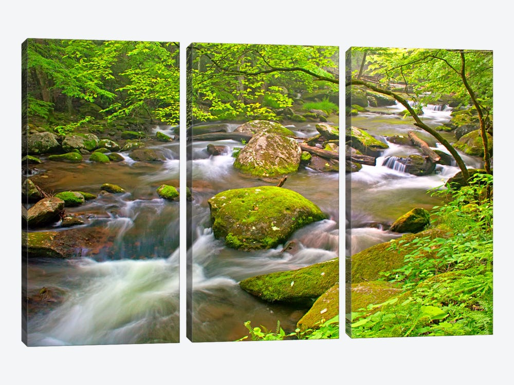 Little River Rapids by Bob Rouse 3-piece Canvas Print