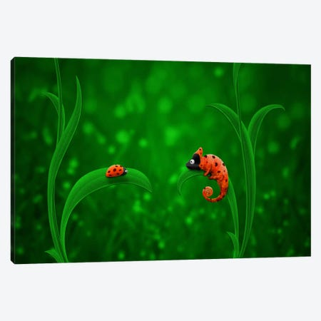 Ladybug & Chameleon Canvas Print #7119} by Unknown Artist Canvas Wall Art