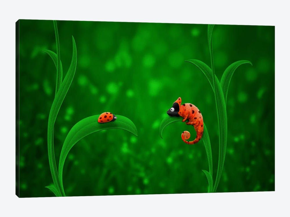 Ladybug & Chameleon by Unknown Artist 1-piece Canvas Print