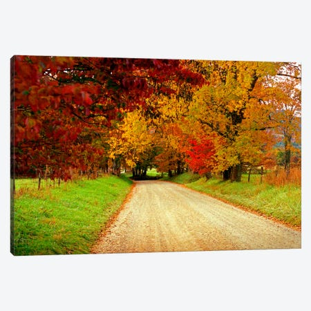Sparks Lane, TN Canvas Print #7126} by J.D. McFarlan Canvas Wall Art