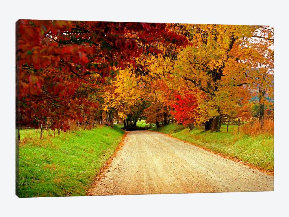 Sparks Lane, TN by J.D. McFarlan 1-piece Canvas Art Print