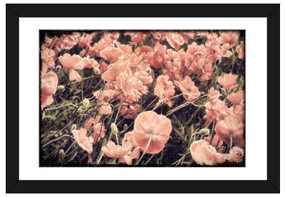Ginger Poppies Framed Art Print