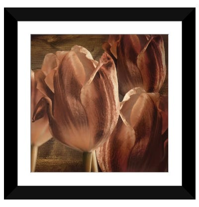 Copper Tulips Framed Art Print