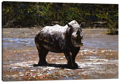 White Rhino Canvas Art Print