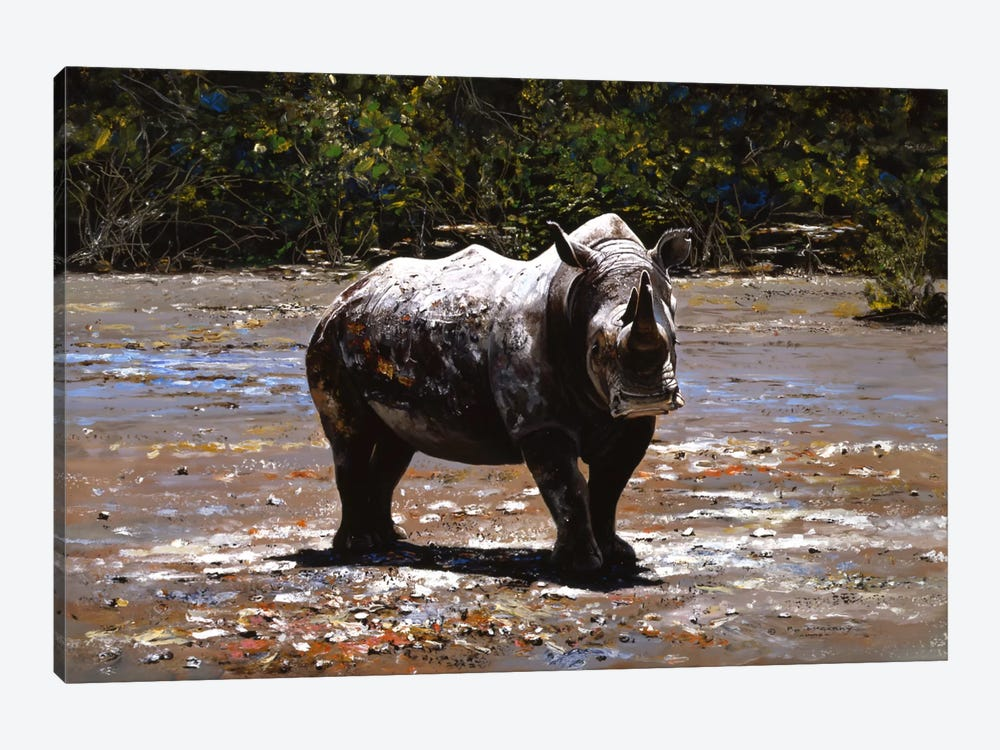 White Rhino by Pip McGarry 1-piece Canvas Art Print