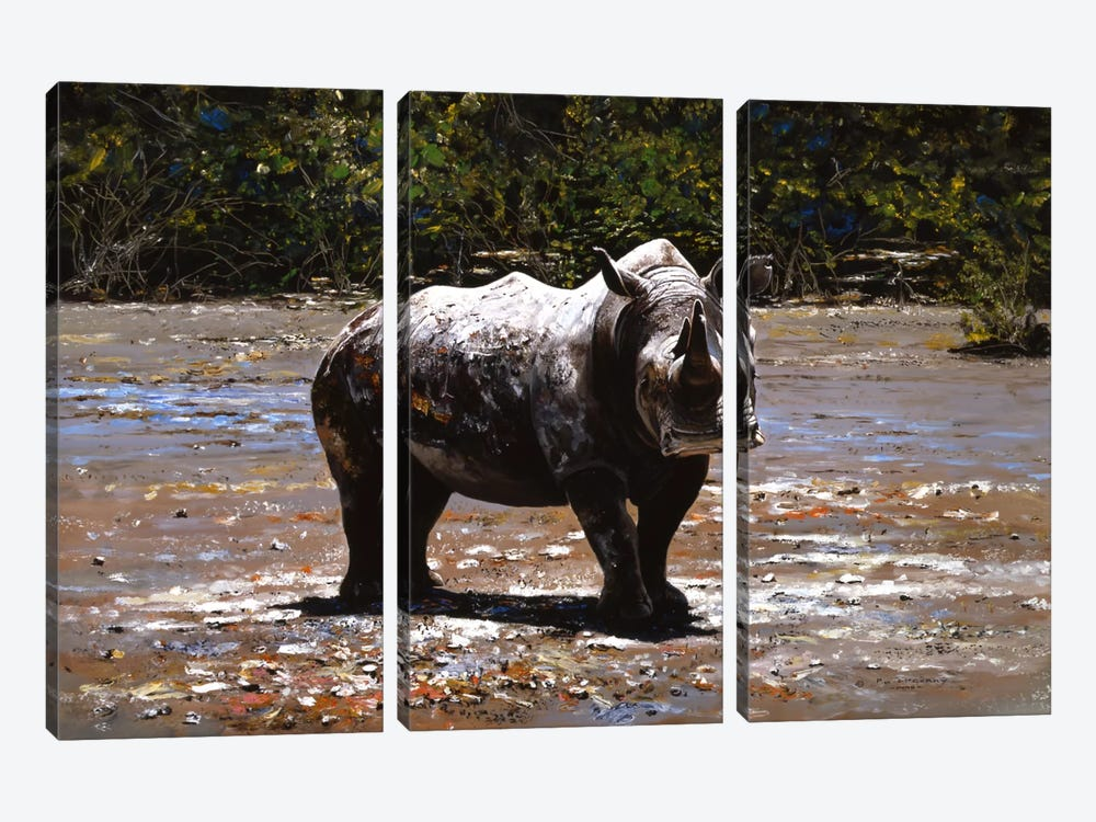 White Rhino by Pip McGarry 3-piece Canvas Print