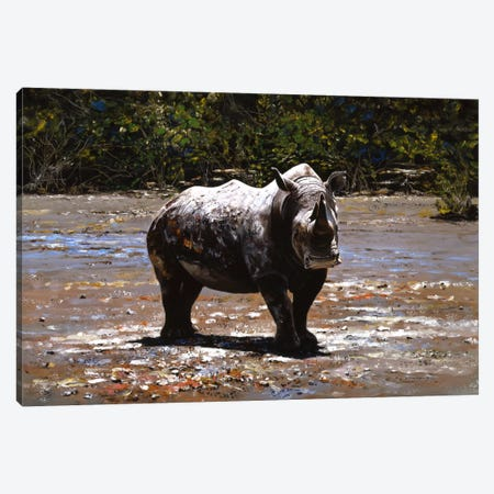 White Rhino Canvas Print #7139} by Pip McGarry Canvas Artwork