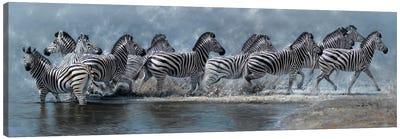 Flight of The Zebras Canvas Art Print