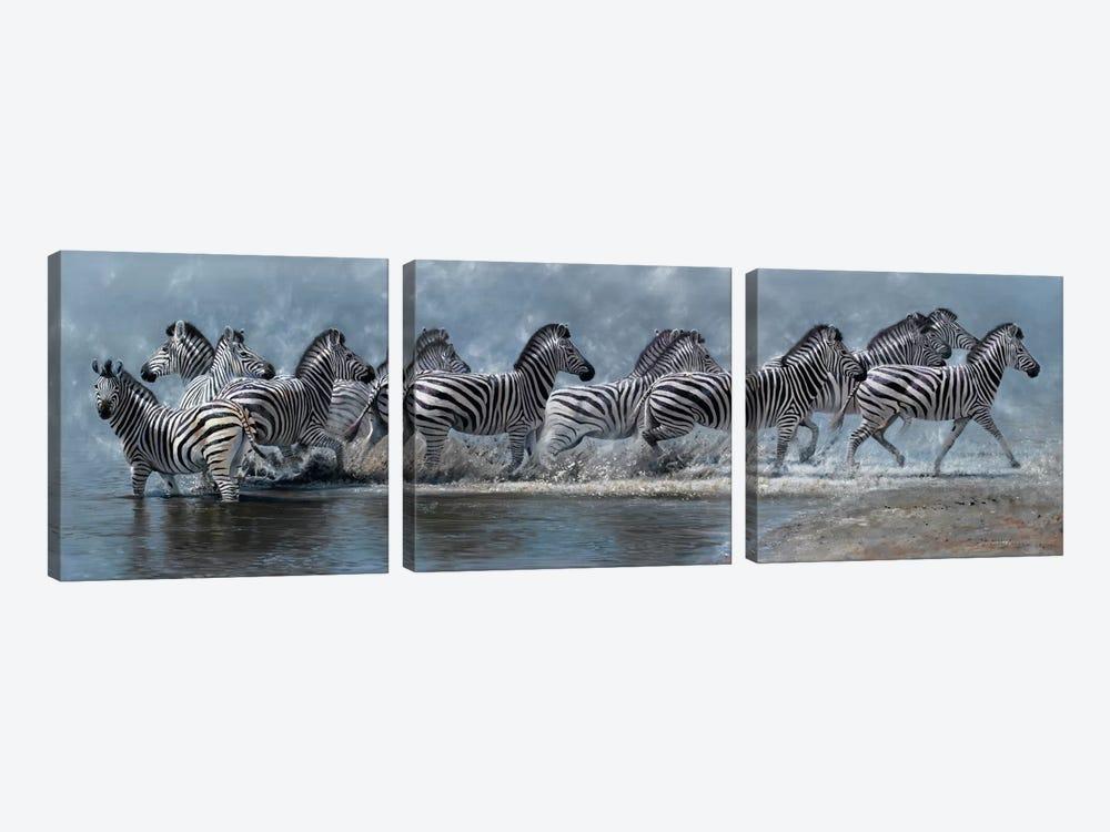 Flight of The Zebras by Pip McGarry 3-piece Art Print