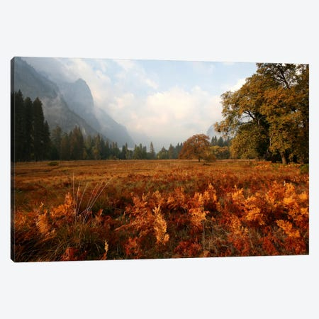 Meadow Canvas Print #7166} by Christopher Bliss Canvas Artwork