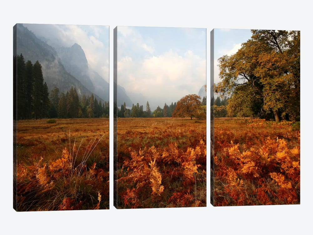 Meadow by Christopher Bliss 3-piece Art Print