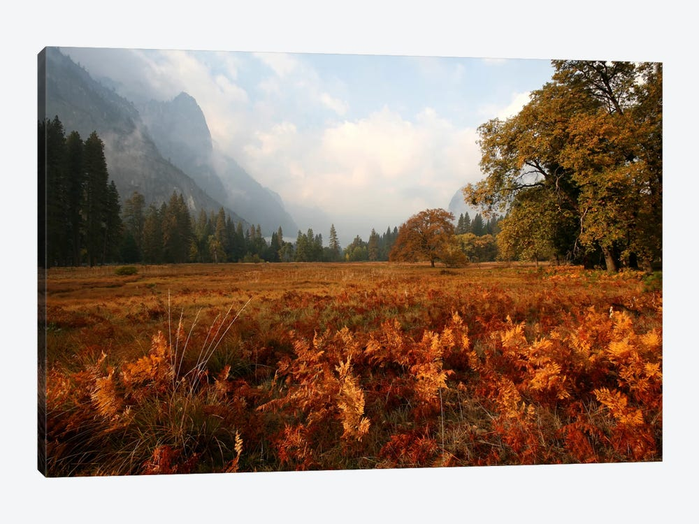 Meadow by Christopher Bliss 1-piece Art Print
