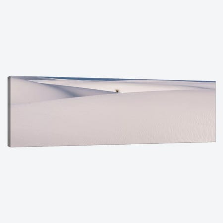 White Sands Canvas Print #7176} by Dan Ballard Canvas Print