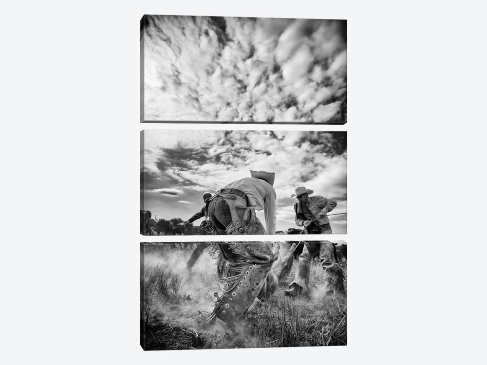 Dust by Dan Ballard 3-piece Canvas Artwork