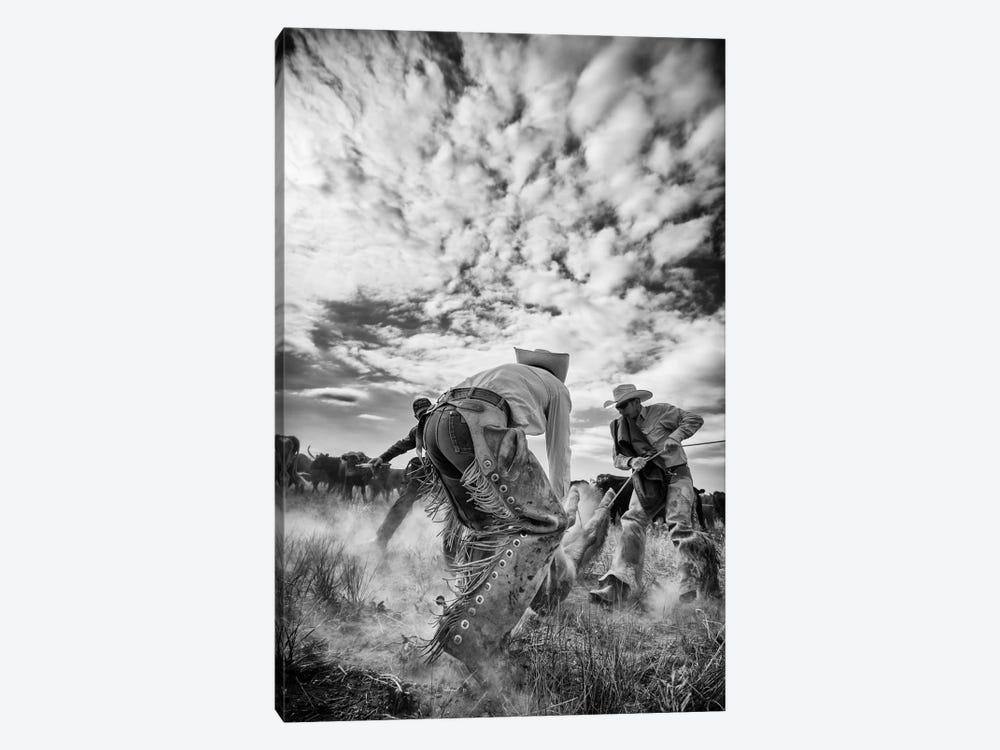 Dust by Dan Ballard 1-piece Canvas Wall Art