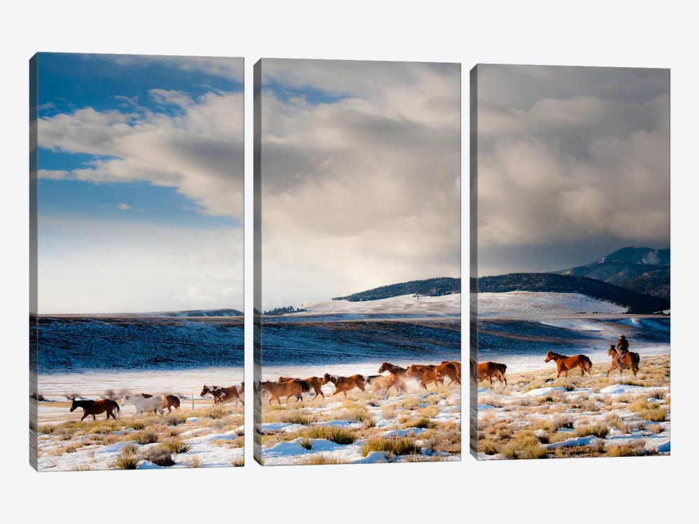 Heading Home by Dan Ballard 3-piece Canvas Art