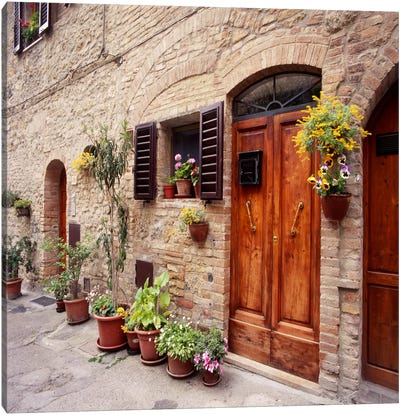 Flowers on The WallTuscany, Italy 06 - Color Canvas Art Print