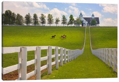 Manchester Farm, Kentucky 08 - Color Canvas Art Print