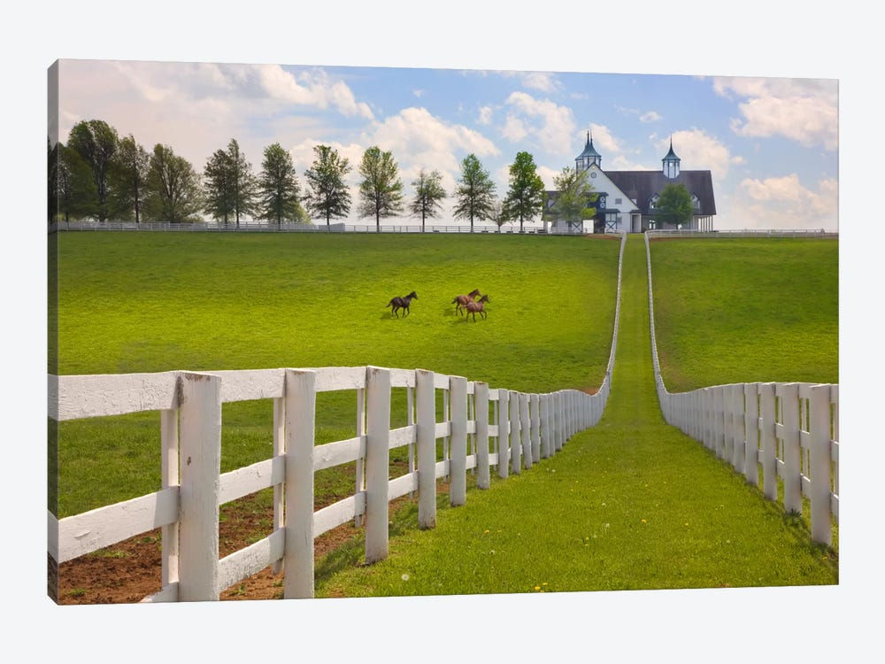 Manchester Farm, Kentucky 08 - Color by Monte Nagler 1-piece Canvas Art Print