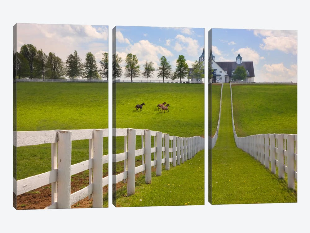 Manchester Farm, Kentucky 08 - Color by Monte Nagler 3-piece Art Print