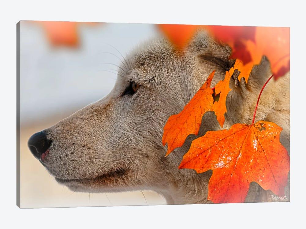 Wolf Profile Autumn Leaves by Gordon Semmens 1-piece Canvas Artwork