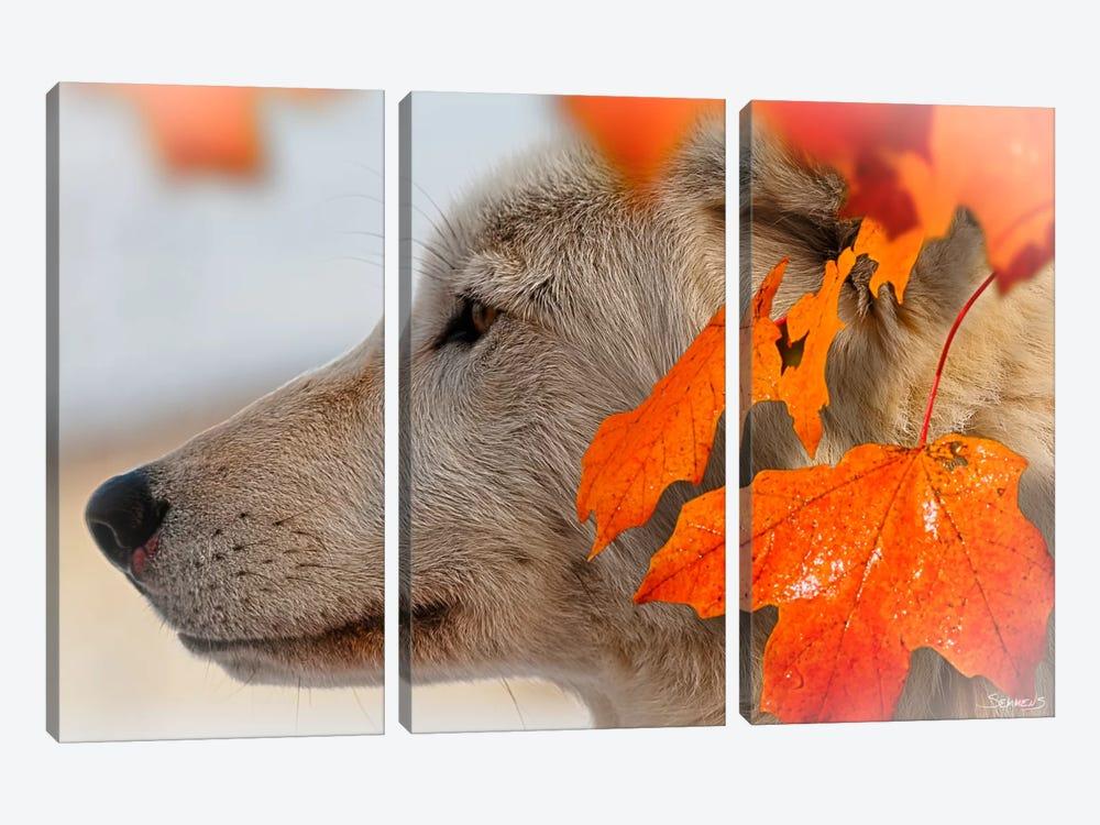 Wolf Profile Autumn Leaves by Gordon Semmens 3-piece Canvas Art