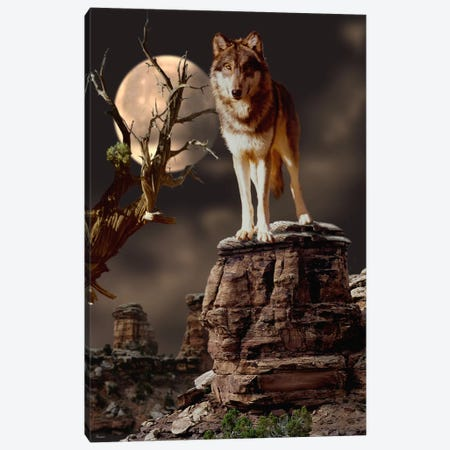 Moonlighter Canvas Print #7199} by Gordon Semmens Canvas Wall Art