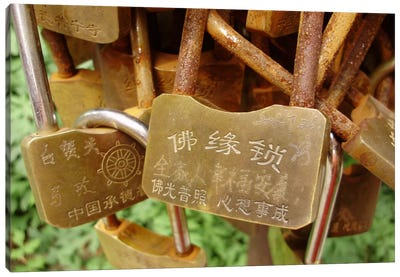 Buddhist Locks At Puning Canvas Art Print
