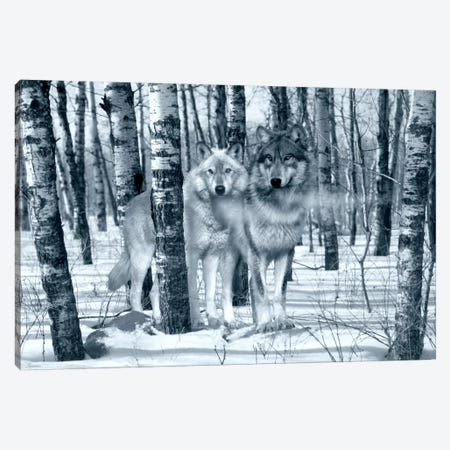 Snow Shadows Silvertones Canvas Print #7300} by Gordon Semmens Canvas Print